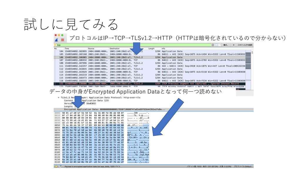 試しに⾒てみる データの中⾝がEncrypted Application Dataとなって何⼀...