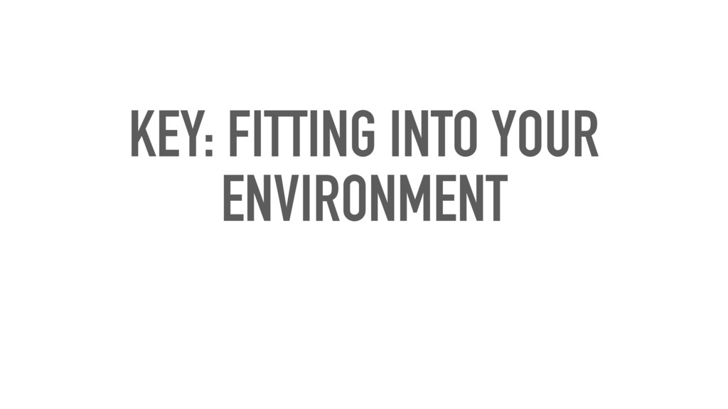 KEY: FITTING INTO YOUR ENVIRONMENT