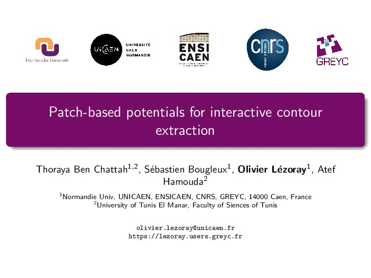 Patch-based potentials for interactive contour ...