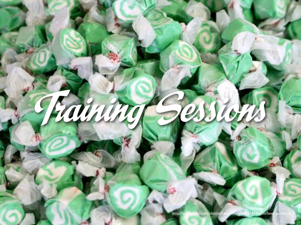 Training Sessions http://www.flickr.com/photos/t...