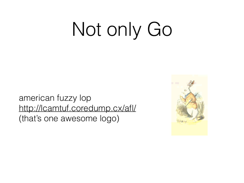 Not only Go american fuzzy lop http://lcamtuf....