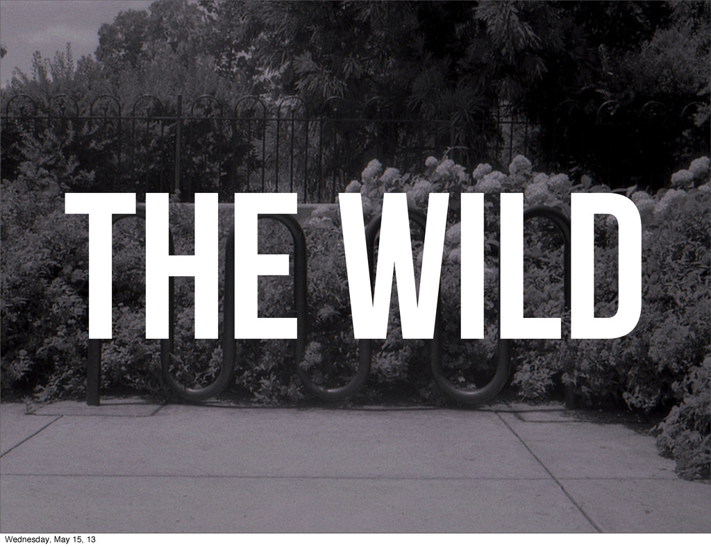 THE WILD Wednesday, May 15, 13