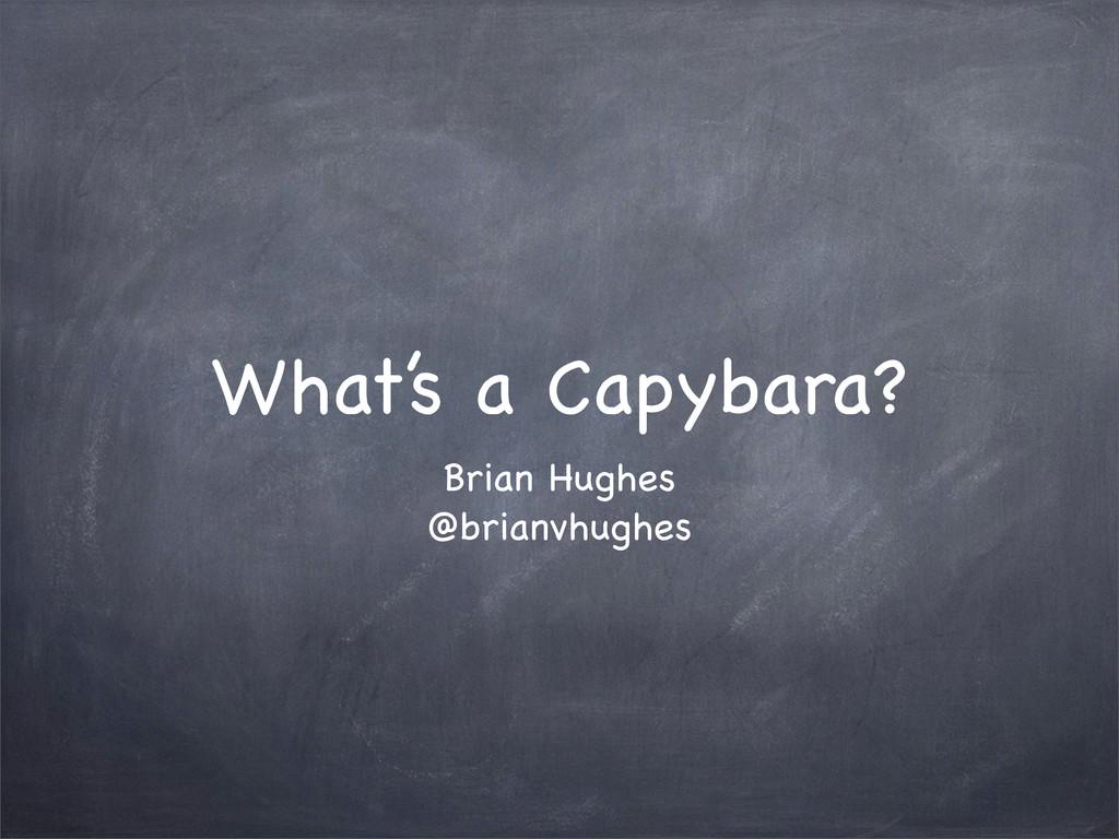 Brian Hughes @brianvhughes What's a Capybara?