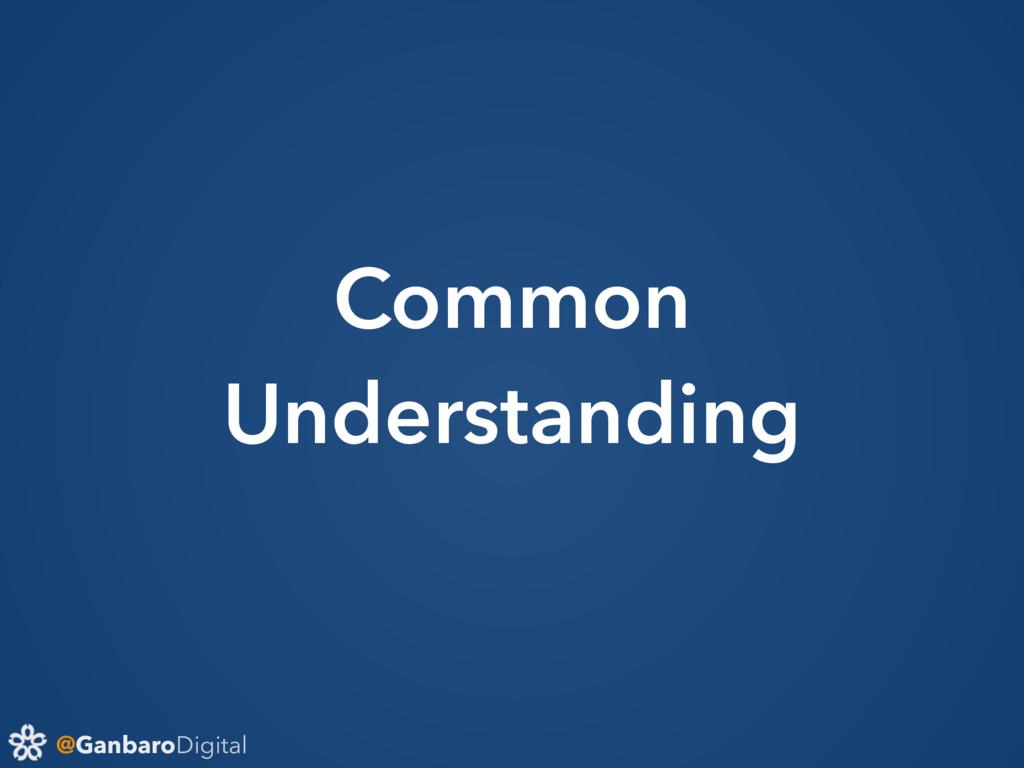 @GanbaroDigital Common Understanding