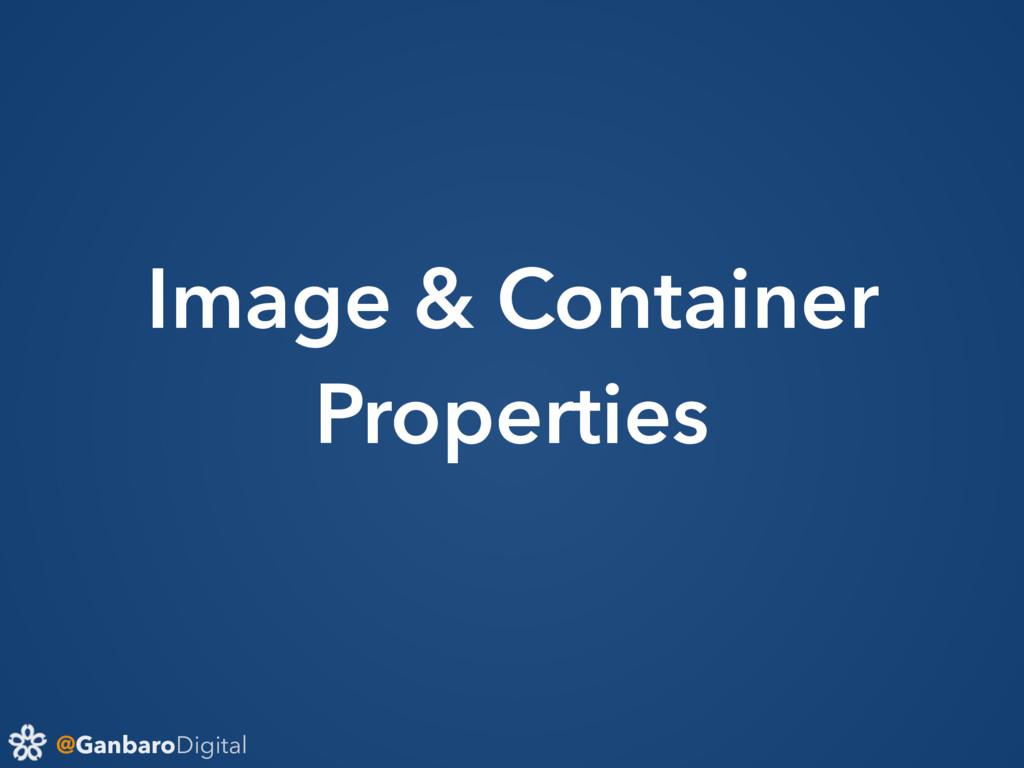 @GanbaroDigital Image & Container Properties