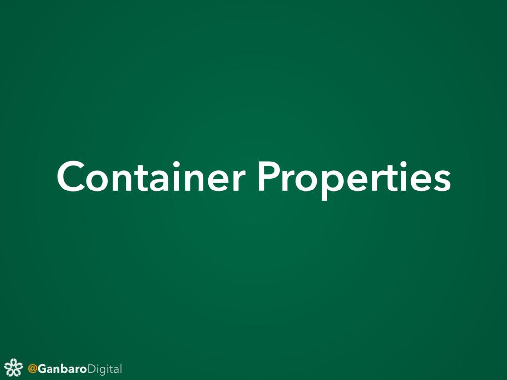 @GanbaroDigital Container Properties