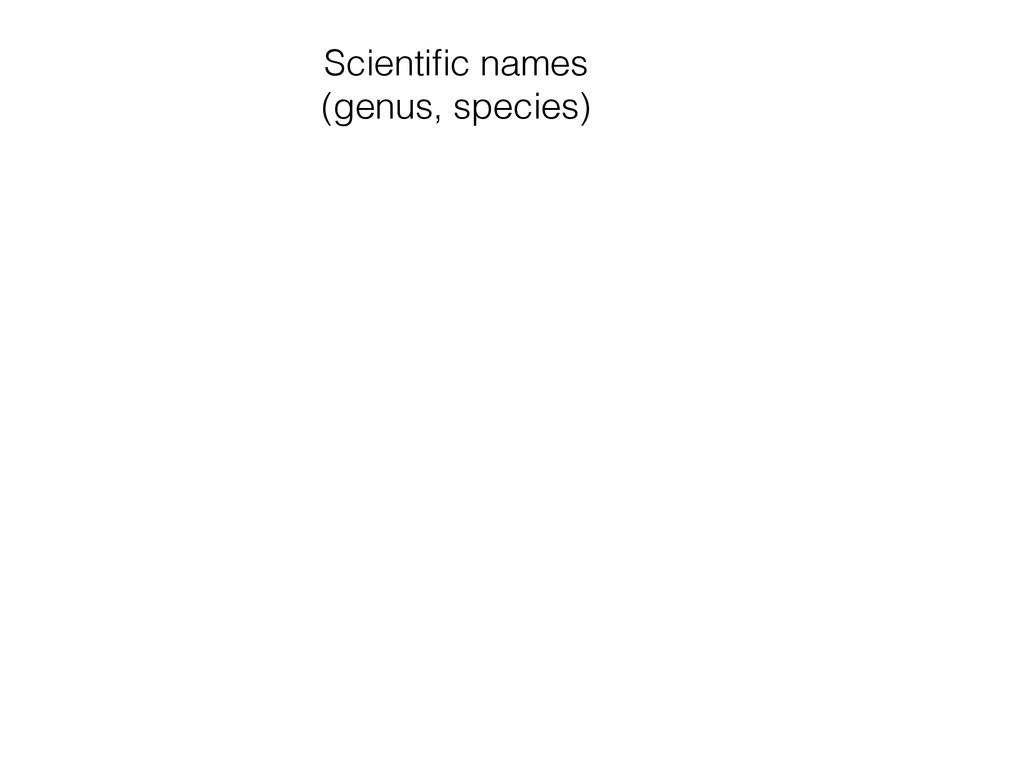 Scientific names (genus, species)