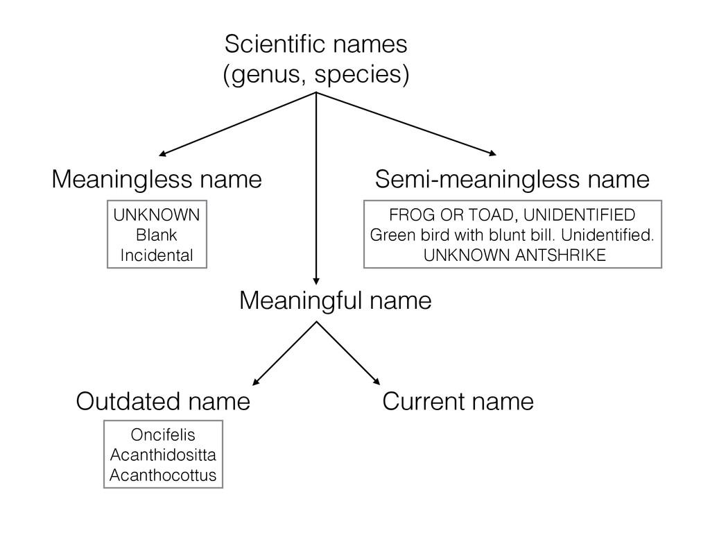 Meaningless name Scientific names (genus, specie...