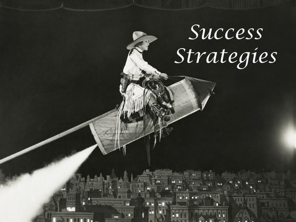 © Microsoft Corporation Success Strategies