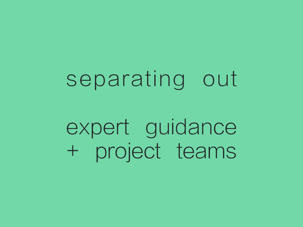 separating out expert guidance + project teams