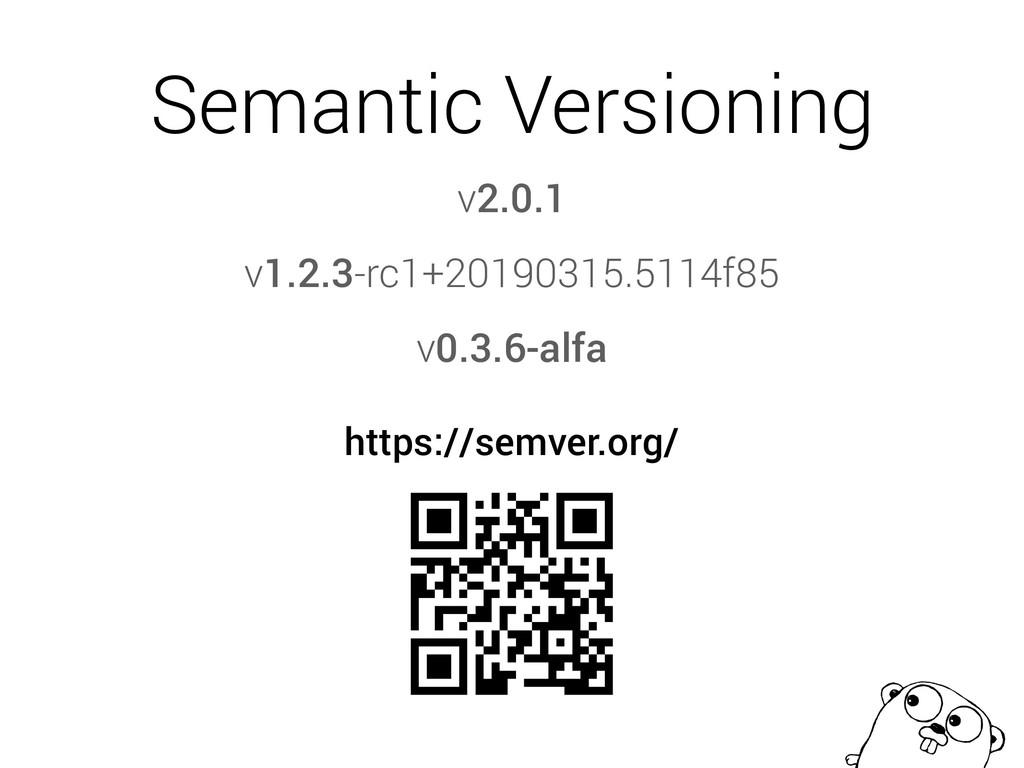 Semantic Versioning https://semver.org/ v1.2.3-...