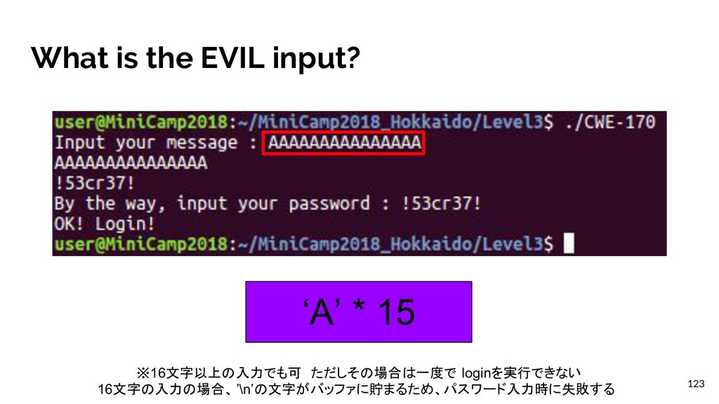 What is the EVIL input? 'A' * 15 123 ※16文字以上の入力...