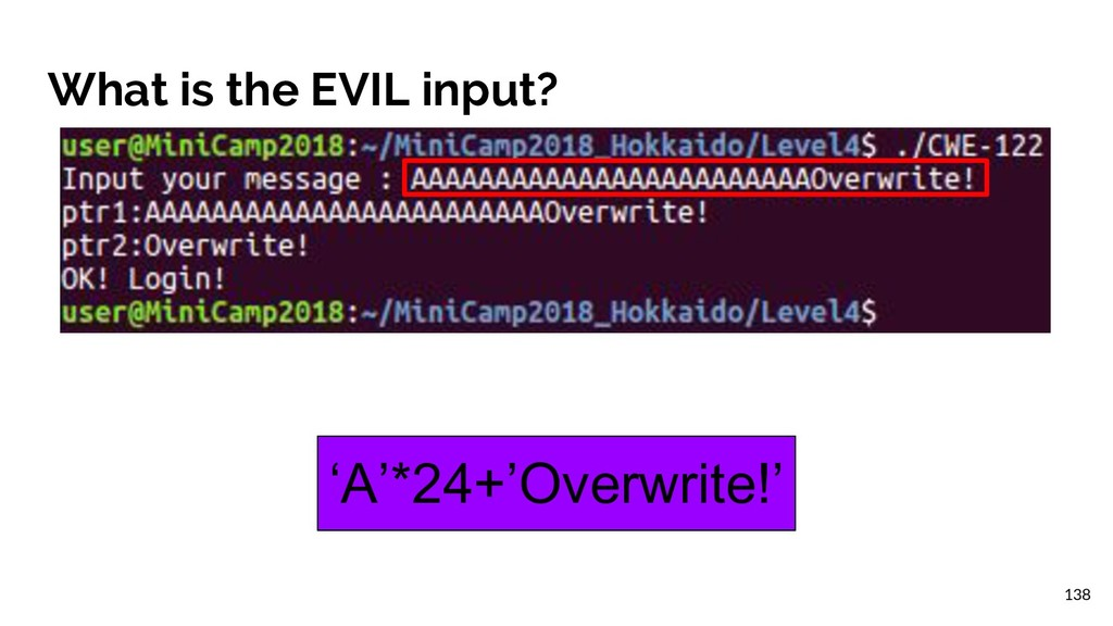 What is the EVIL input? 'A'*24+'Overwrite!' 138