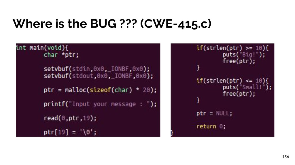 Where is the BUG ??? (CWE-415.c) 156