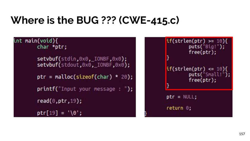 Where is the BUG ??? (CWE-415.c) 157