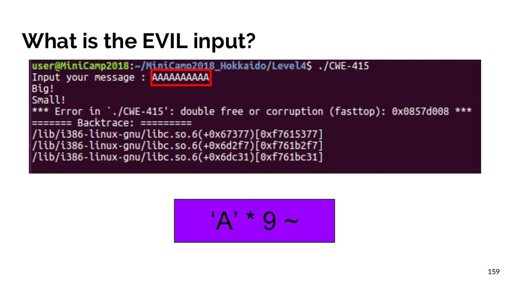 What is the EVIL input? 'A' * 9 ~ 159