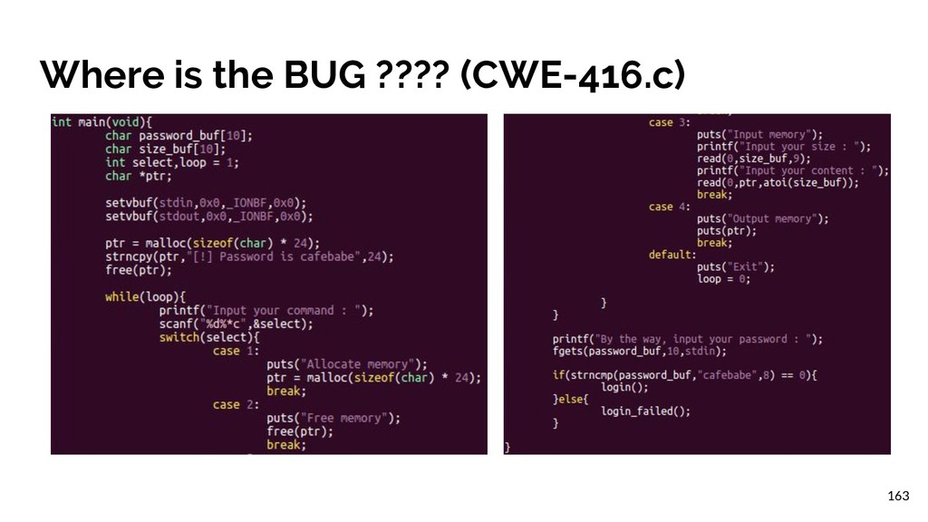 Where is the BUG ???? (CWE-416.c) 163