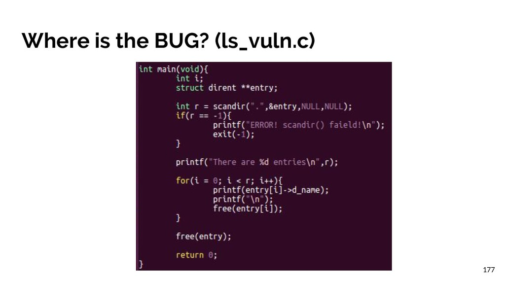 Where is the BUG? (ls_vuln.c) 177