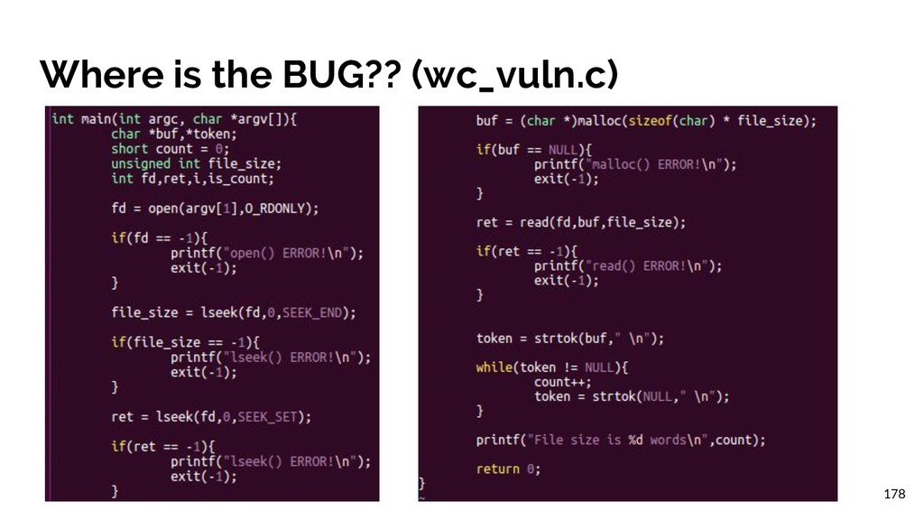 Where is the BUG?? (wc_vuln.c) 178