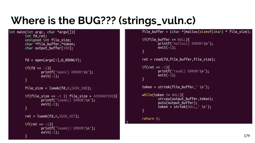 Where is the BUG??? (strings_vuln.c) 179