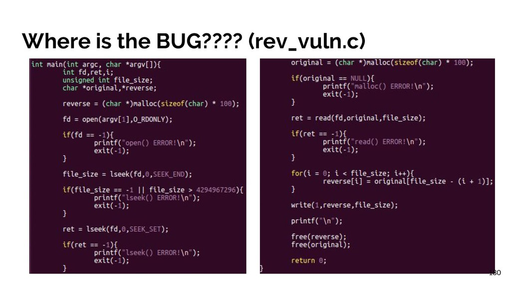 Where is the BUG???? (rev_vuln.c) 180