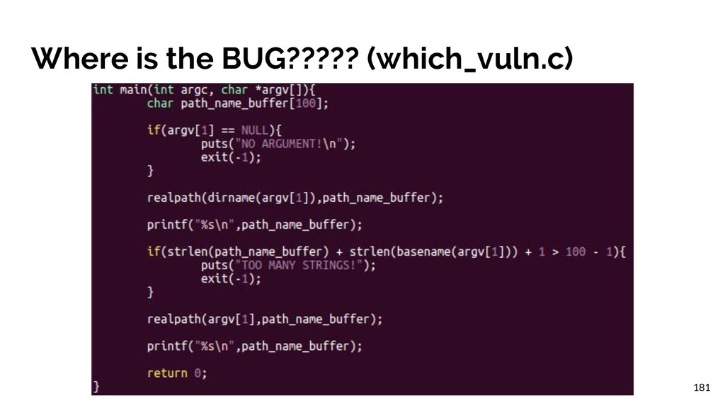 Where is the BUG????? (which_vuln.c) 181
