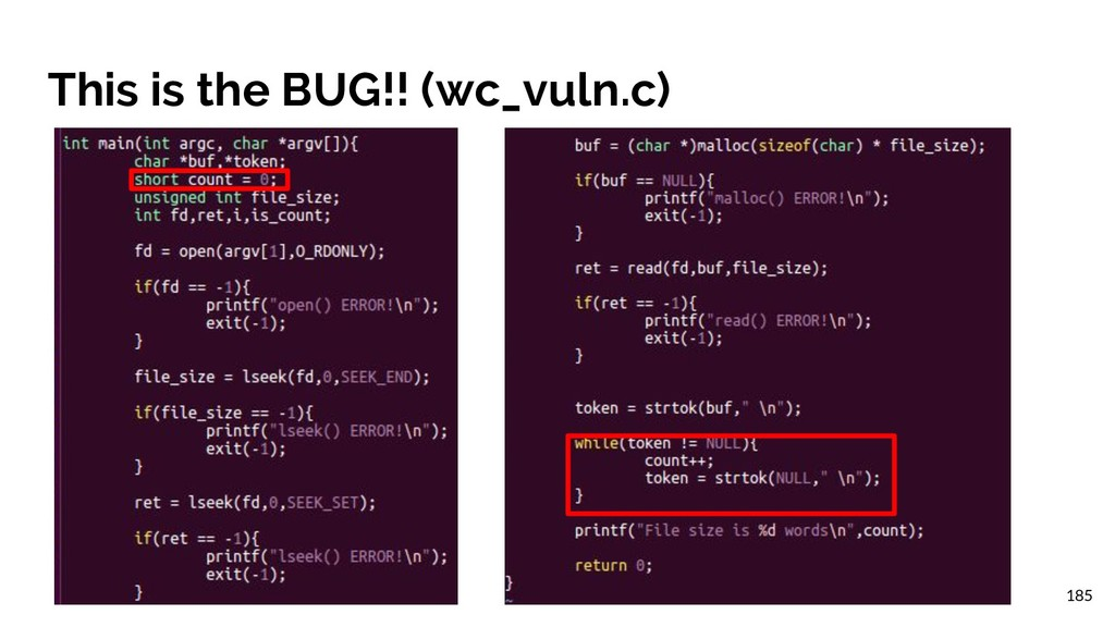 This is the BUG!! (wc_vuln.c) 185