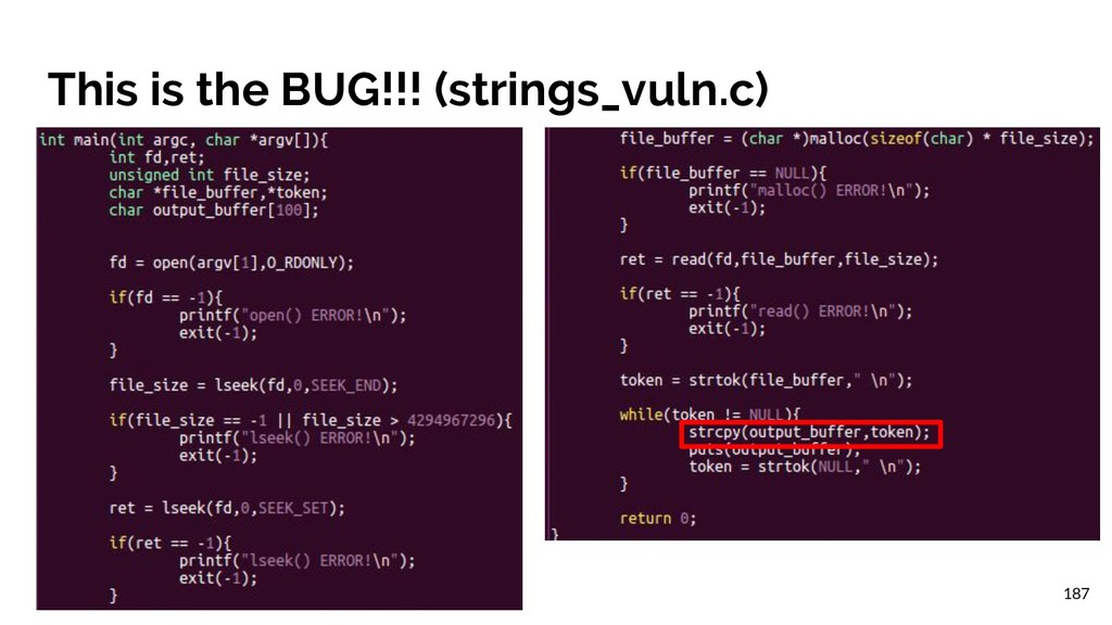 This is the BUG!!! (strings_vuln.c) 187