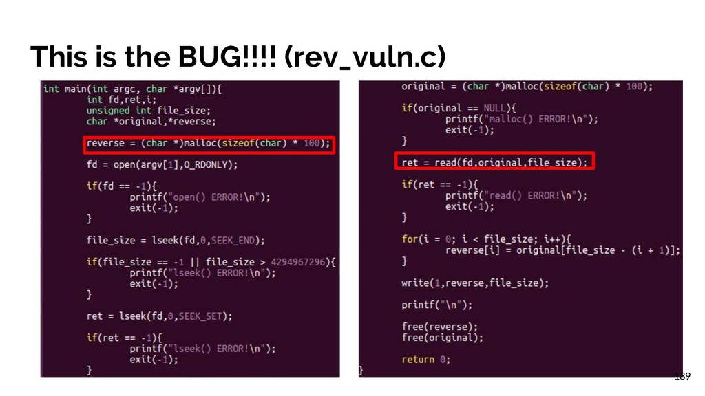 This is the BUG!!!! (rev_vuln.c) 189