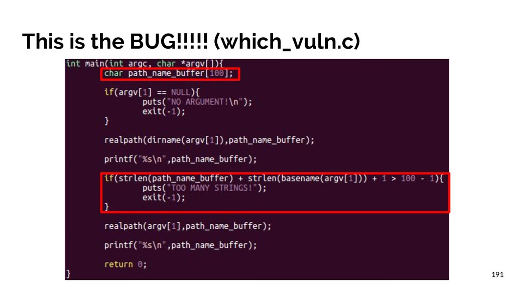 This is the BUG!!!!! (which_vuln.c) 191