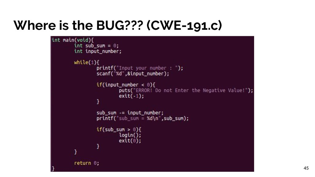 Where is the BUG??? (CWE-191.c) 45