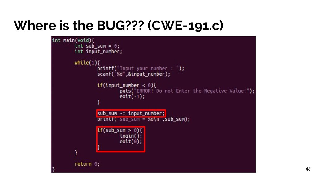 Where is the BUG??? (CWE-191.c) 46