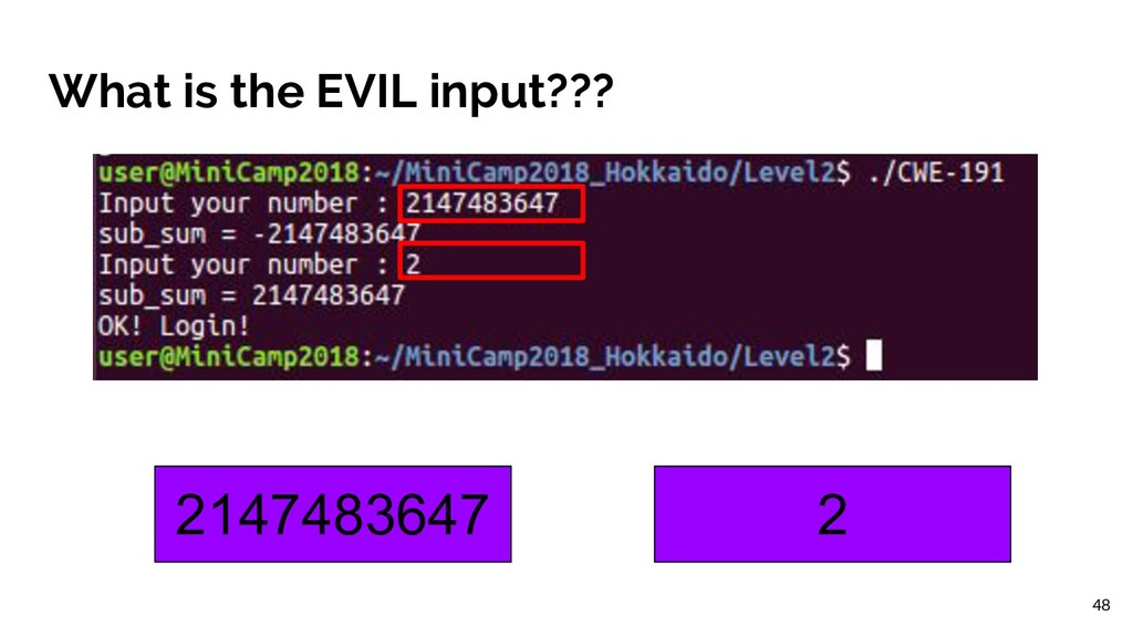 What is the EVIL input??? 2147483647 2 48