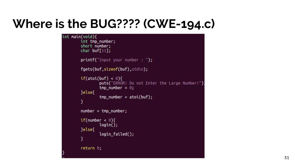 Where is the BUG???? (CWE-194.c) 51