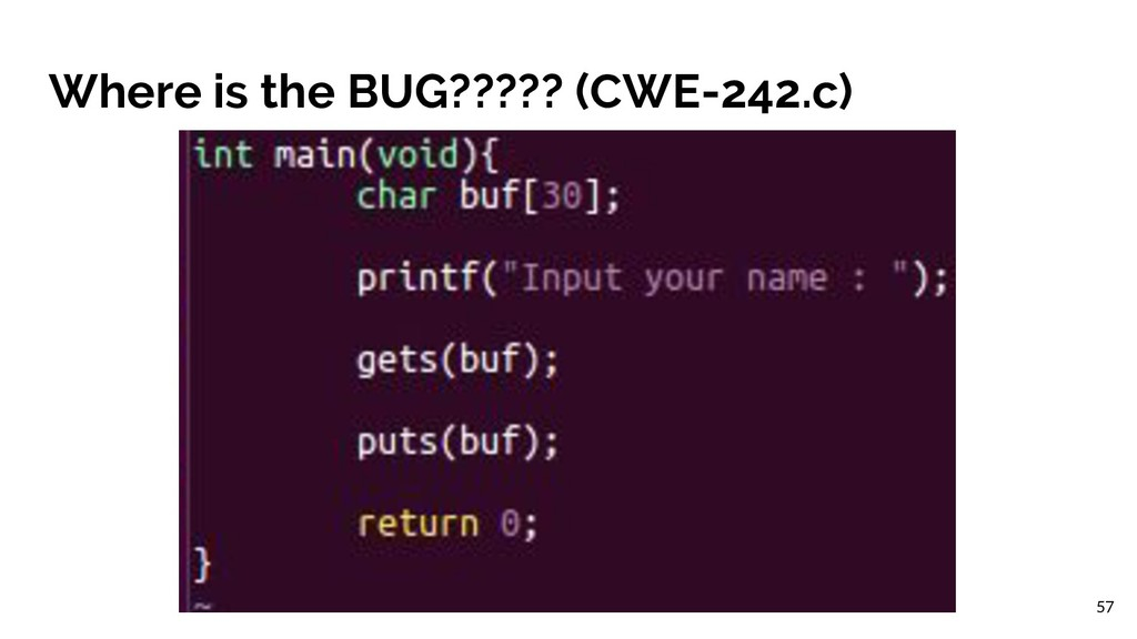 Where is the BUG????? (CWE-242.c) 57