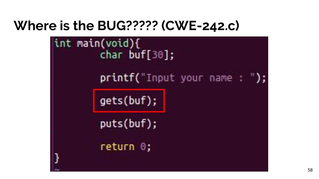 Where is the BUG????? (CWE-242.c) 58