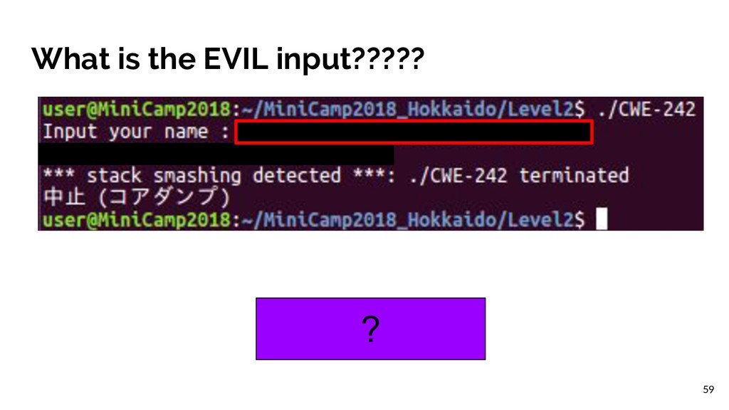 What is the EVIL input????? ? 59
