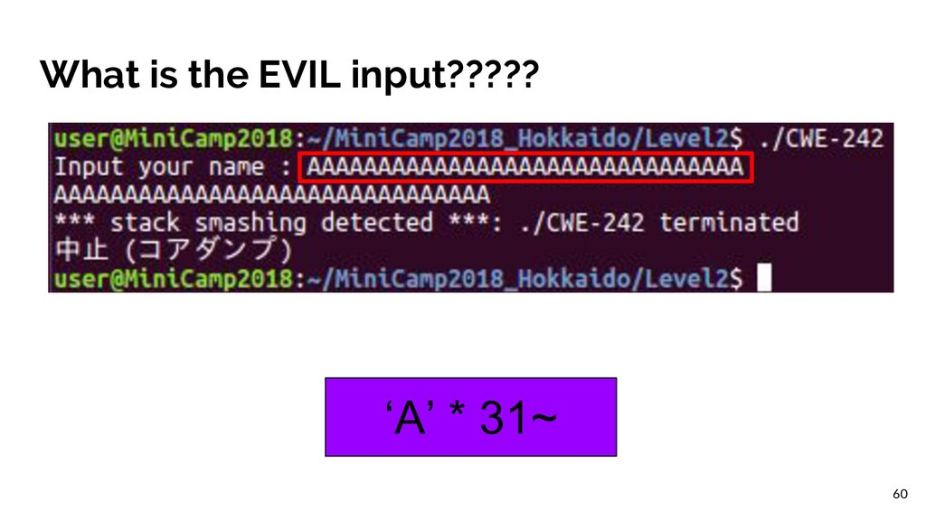 What is the EVIL input????? 'A' * 31~ 60