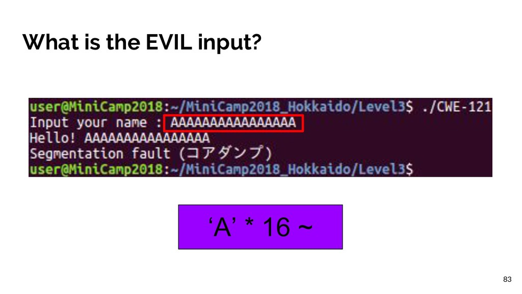 What is the EVIL input? 'A' * 16 ~ 83