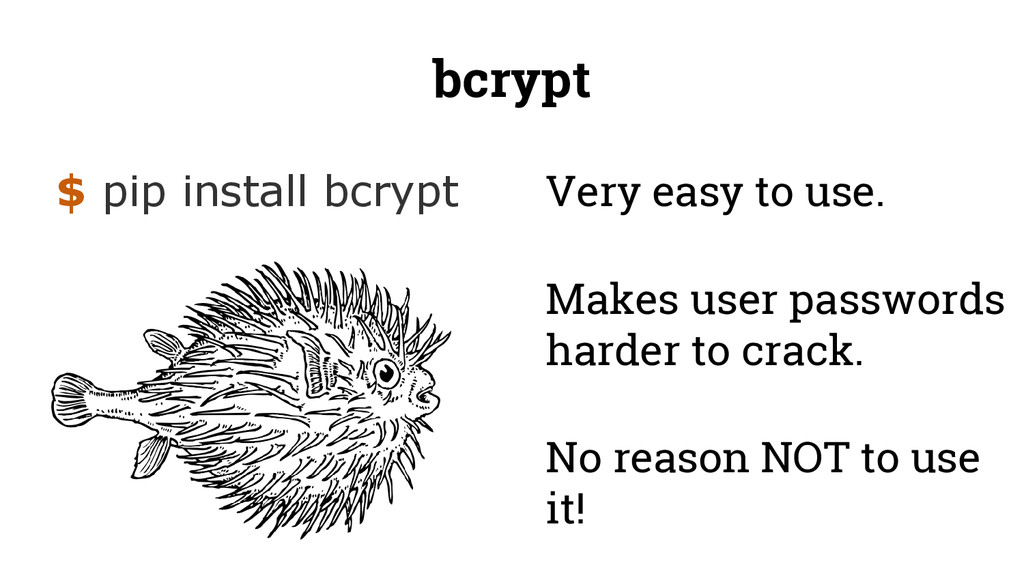 bcrypt $ pip install bcrypt Makes user password...