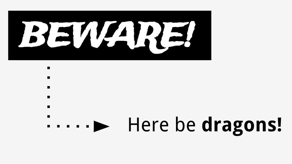 BEWARE! Here be dragons!
