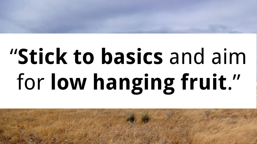 """""""Stick to basics and aim for low hanging fruit."""""""