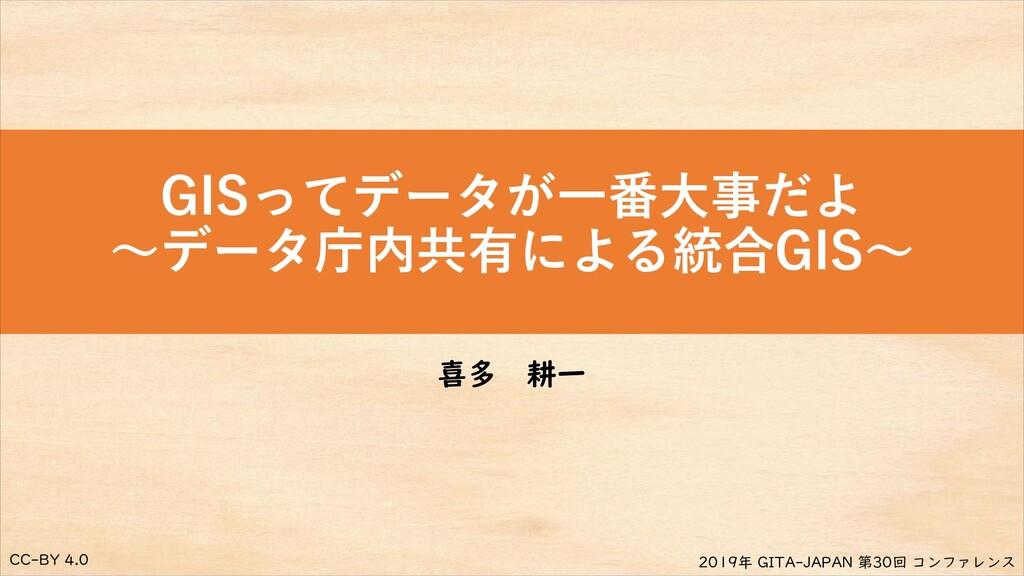 CC-BY 4.0 2019年 GITA-JAPAN 第30回 コンファレンス GISってデー...