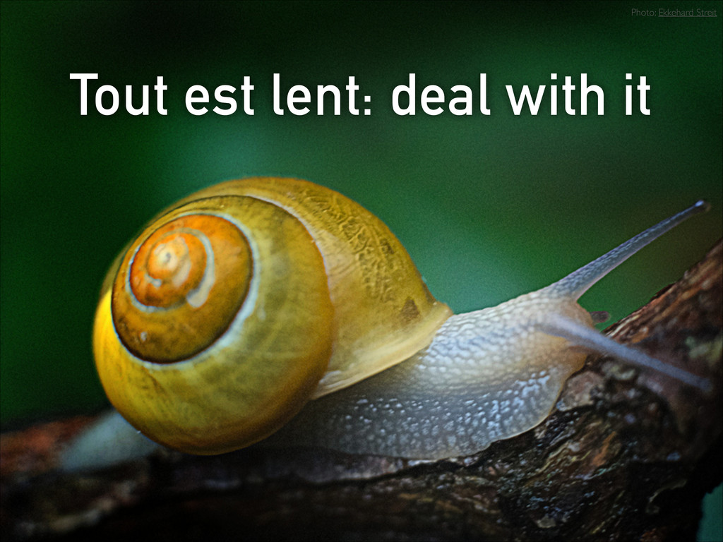 Tout est lent: deal with it Photo: Ekkehard Str...