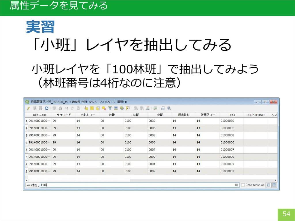 属性データを見てみる 54 実習 「小班」レイヤを抽出してみる 小班レイヤを「100林班」で抽...