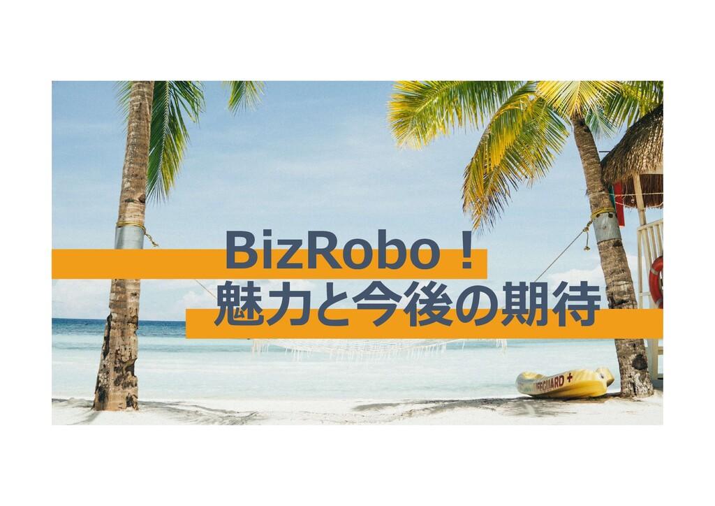 BizRobo! 魅力と今後の期待