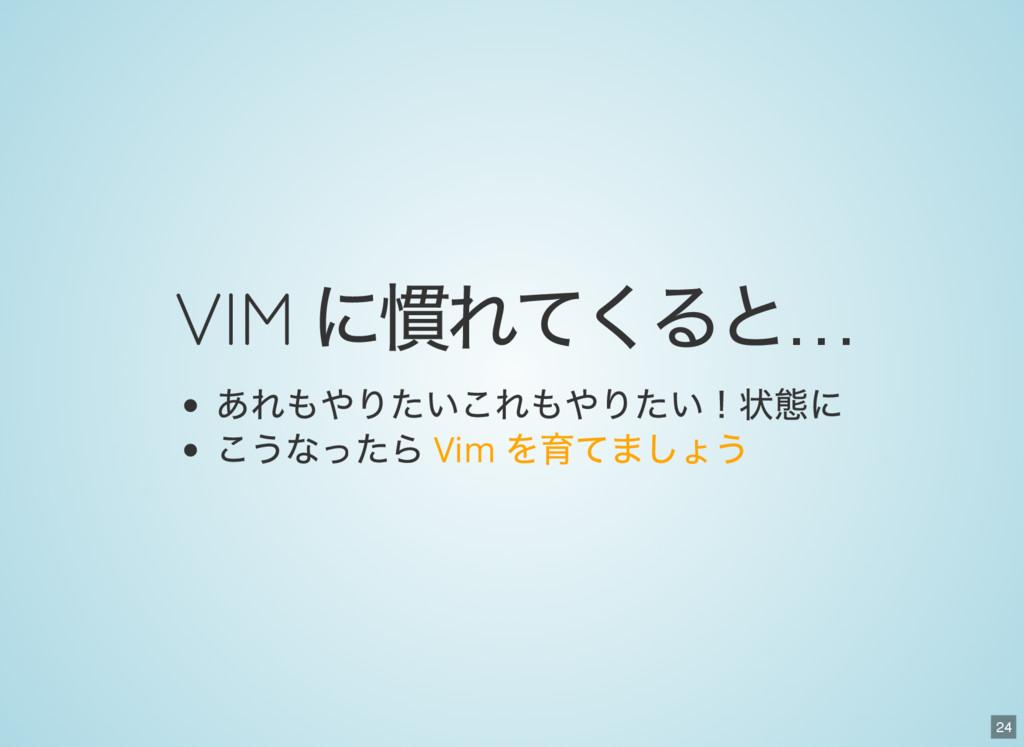 24 VIM に慣れてくると… あれもやりたいこれもやりたい!状態に こうなったら Vim を...