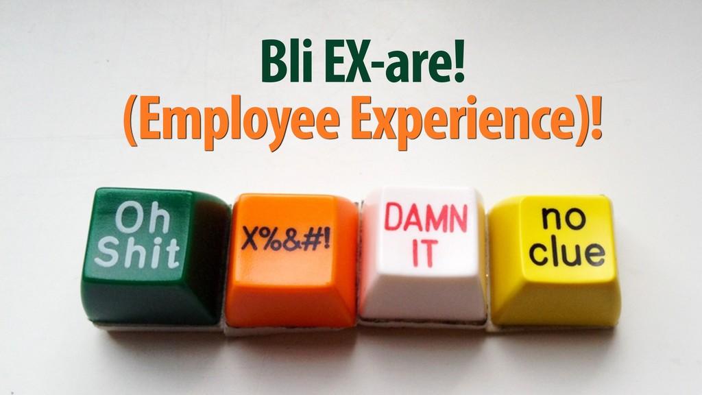 Bli EX-are! (Employee Experience)!