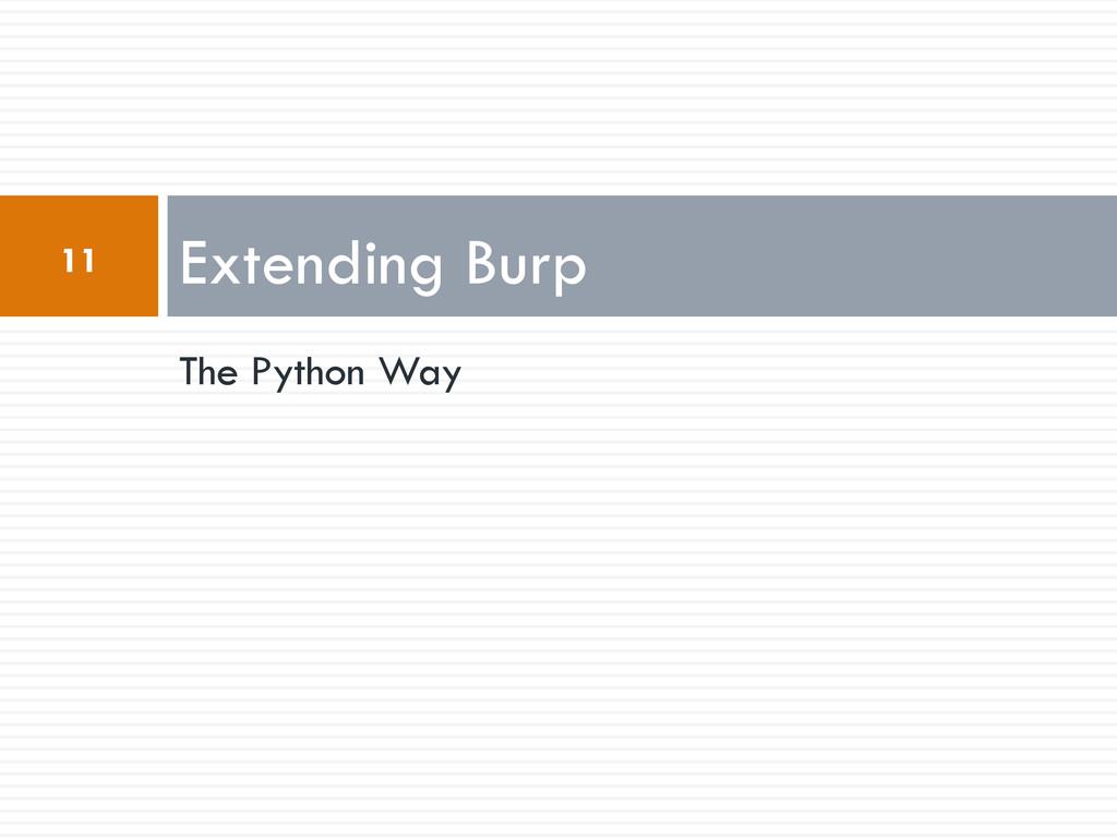 The Python Way Extending Burp 11