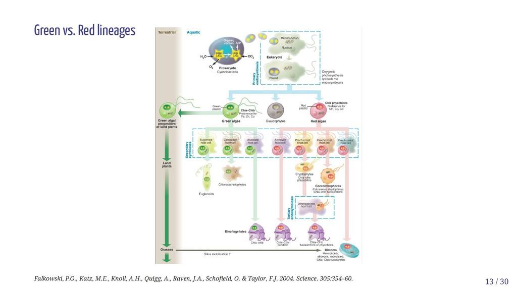 Green vs. Red lineages Falkowski, P.G., Katz, M...